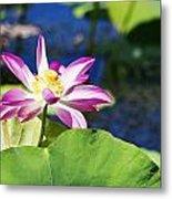 Lotus Flower V6 Metal Print