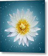Lotus With Glitter Background  Metal Print