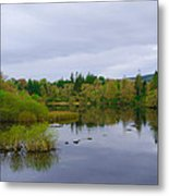 Lough Eske In The Morning Metal Print