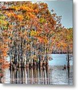 Louisiana Autumn Metal Print