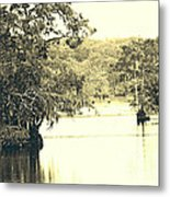 Louisiana Chicot State Park  Metal Print