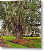 Louisiana Country Metal Print