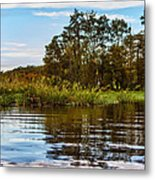 Louisiana Lake Metal Print