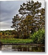 Louisiana Landscape Metal Print