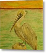 Louisiana State Bird Metal Print
