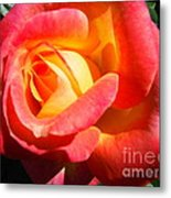 Love And Peace Rose Metal Print