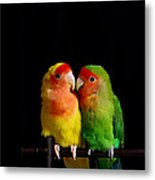 Love Birds At First Sight Metal Print