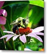 Love Bug Metal Print