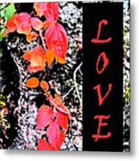 Love Fall Edition Metal Print