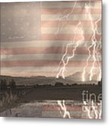 Love For Country Metal Print
