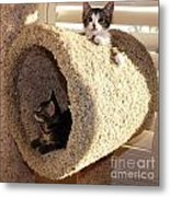 Love Our Cat Condo Metal Print