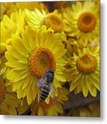 Lovely Flowers Metal Print