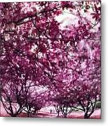 Lovely In Pink Metal Print