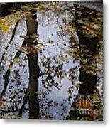 Lovely Trees Metal Print
