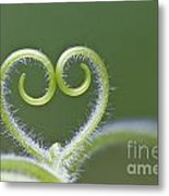 Loving Nature Metal Print