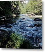 Loving She - Nature  Metal Print by Tim Rice