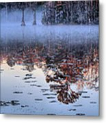 Low Hanging Metal Print by JC Findley