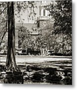 Low Library Metal Print