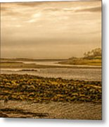 Low Tide Cape Porpoise Maine Metal Print