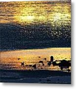 Low Tide Gold Metal Print