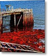 Low Tide - Red Seaweed - Fishing - Moratorium Metal Print