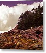 Low Tide Shoreline Closeup With Clouds Metal Print