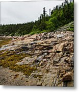 Low Tide - Walking On The Bottom Of Saint Lawrence River Metal Print