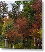 Lowcountry Fall Color Metal Print