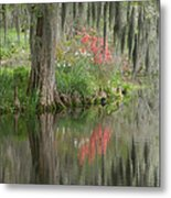 Lowcountry Series I Metal Print