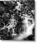 Lower Bridal Veil Falls 1 Bw Metal Print
