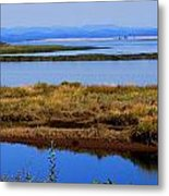 Lower Columbia Panorama I Metal Print by Mamie Gunning