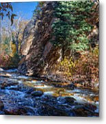 Lower Cottonwood 2014 II Metal Print