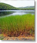 Lower Hadlock Pond Metal Print