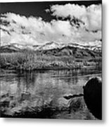 Lower Owens River Metal Print