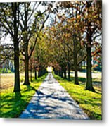 Lowry's Lane Metal Print by Betty Smithhart