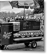 Lucky Dogs In Jackson Square Nola Bw Metal Print