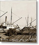 Lumber Steamers Unloading At Redwood Mfg. Co.s Wharf Pittsburg Circa 1920 Metal Print
