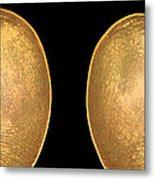 Luminescence - Toes Metal Print