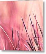 Luminis - S09c - Pink Metal Print