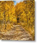 Lundy Canyon Pathway Metal Print