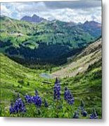 Lupine Over Valley Metal Print