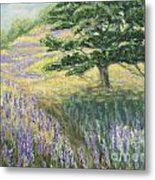 Lupines In May Metal Print