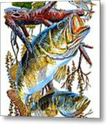 Lurking Bass Metal Print by Carey Chen