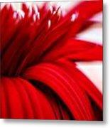 Luscious Red Flower Metal Print