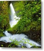 Lush Gorge Falls Metal Print
