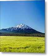 Lush Green Meadow And Mount Bachelor Metal Print