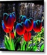 Lustrous Tulips Metal Print