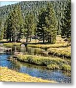 Lyell Canyon Metal Print