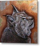 Lynx Face Metal Print