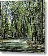 M119 Tunnel Of Trees Michigan Metal Print